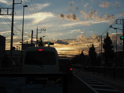 20180922・多磨霊園28
