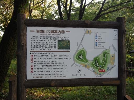 20180922・多磨霊園ネオン08