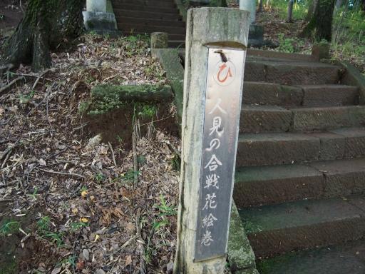 20180922・多磨霊園ネオン17