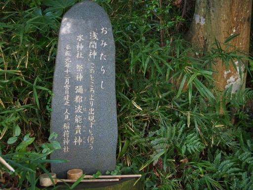 20180922・多磨霊園ネオン16
