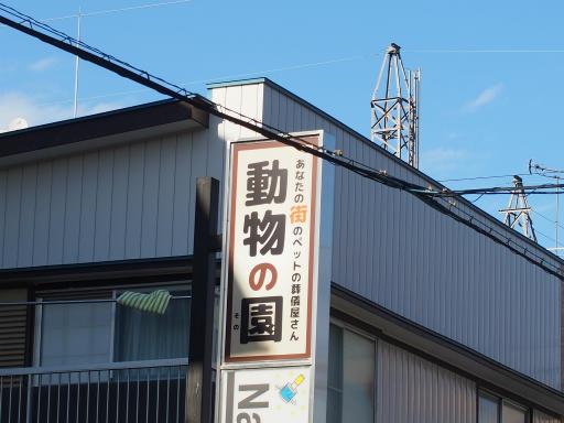 20181007・ところざわ祭2-11