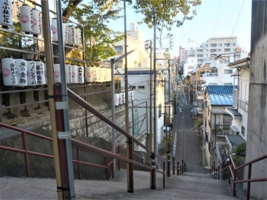 Suga_Shrine_stairs_high-angle_20161113-070754.jpg