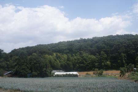 武蔵野線3
