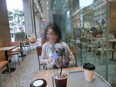 CIMG8811_20180920194617cd5.jpg