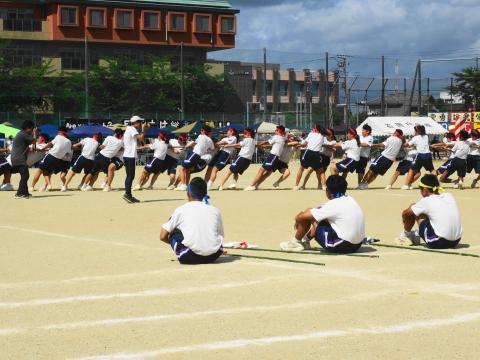 「石岡市内中学校体育祭」⑦