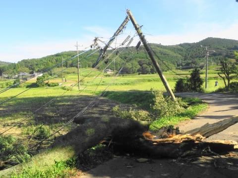 「台風24号倒木停電」青柳地区⑥