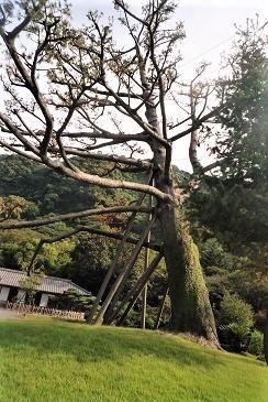 斉彬公別邸 (2)