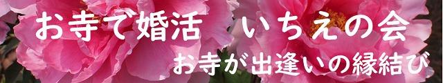 500いちえの会 ホームページ用 ロゴ2