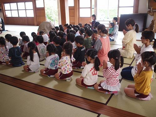 500保育園児による達磨大師【だるまだいし】のお参り2