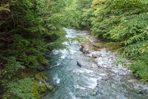 鷹ノ巣山5blog