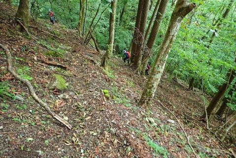鷹ノ巣山9blog