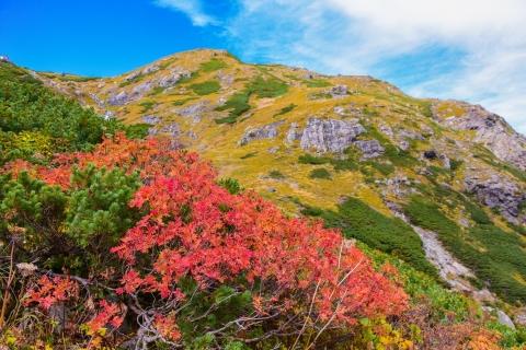 白馬岳29blog