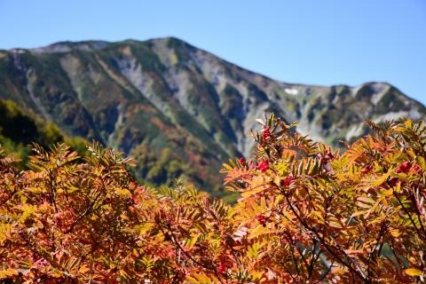 白馬岳2日目23blog