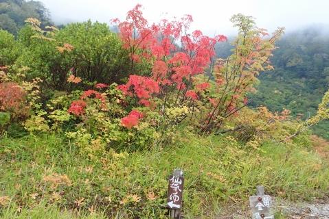 白馬岳2日目34blog