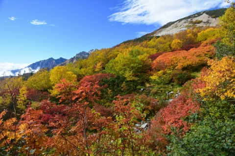 唐松岳20blog