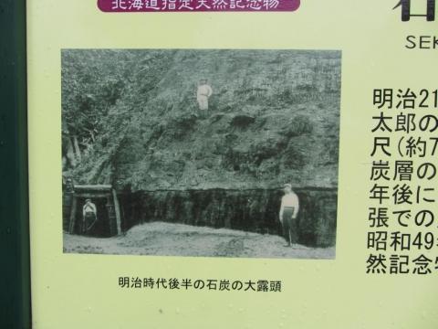 石炭の大露頭