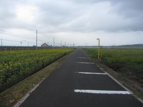 札沼線跡(中ノ岱~碧水)