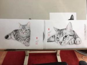 高橋行雄さんが描いた しま