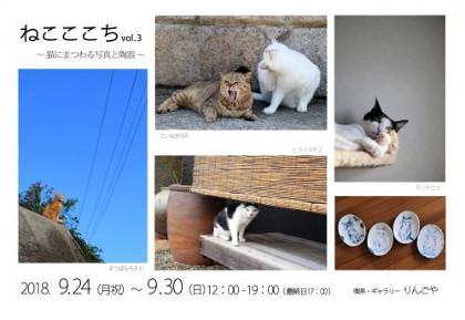 ねこここちvol 3 猫にまつわる写真と陶器
