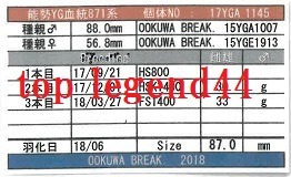 WK17YGA1145♂87.0管理カード11