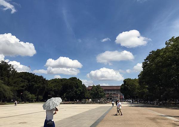 上野の青空