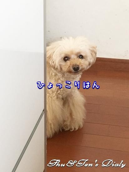 004bIMG_7557.jpg