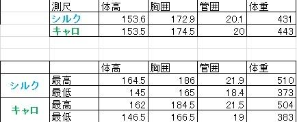 2018キャロ&シルク募集馬測尺
