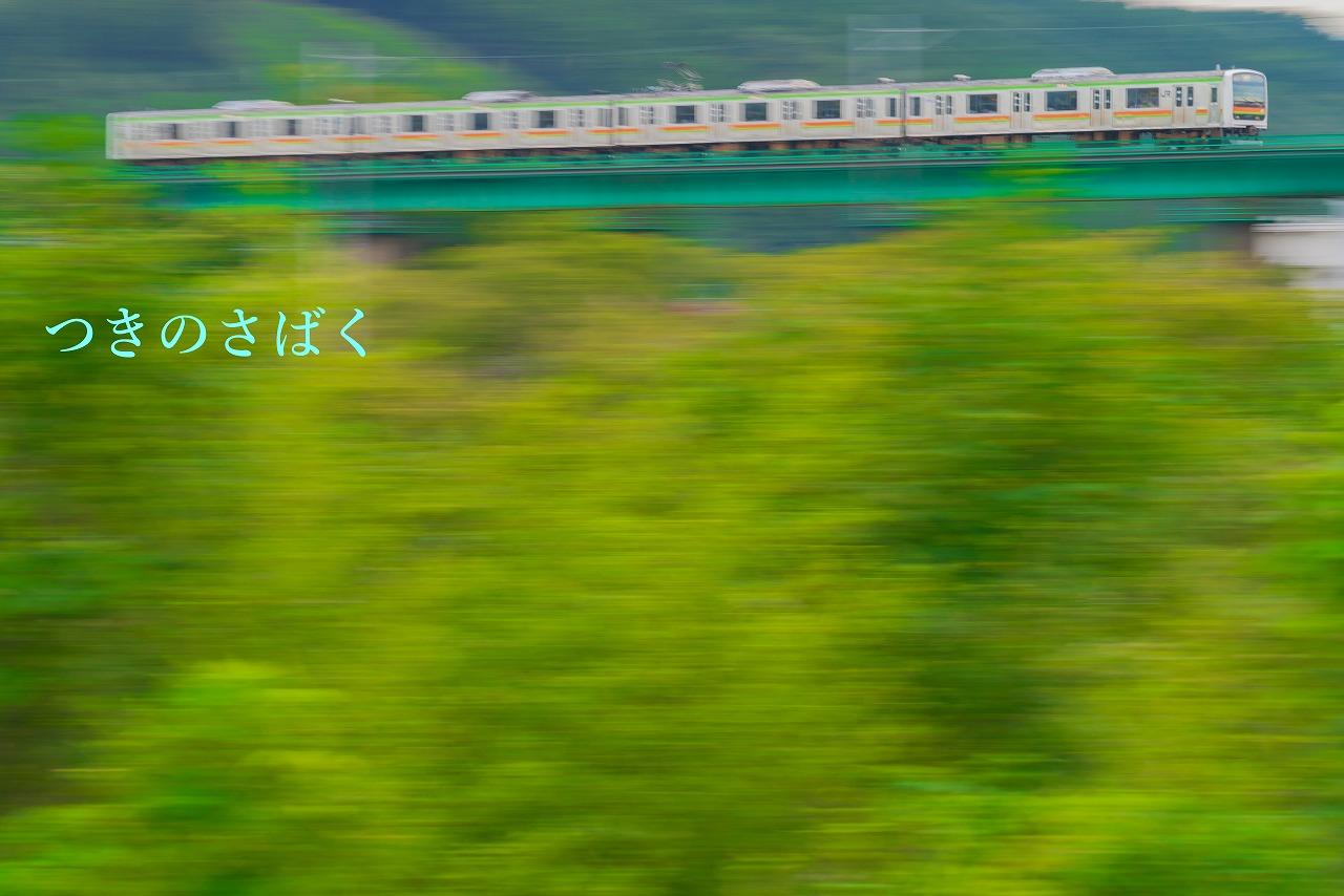 DSC02710-1_1.jpg