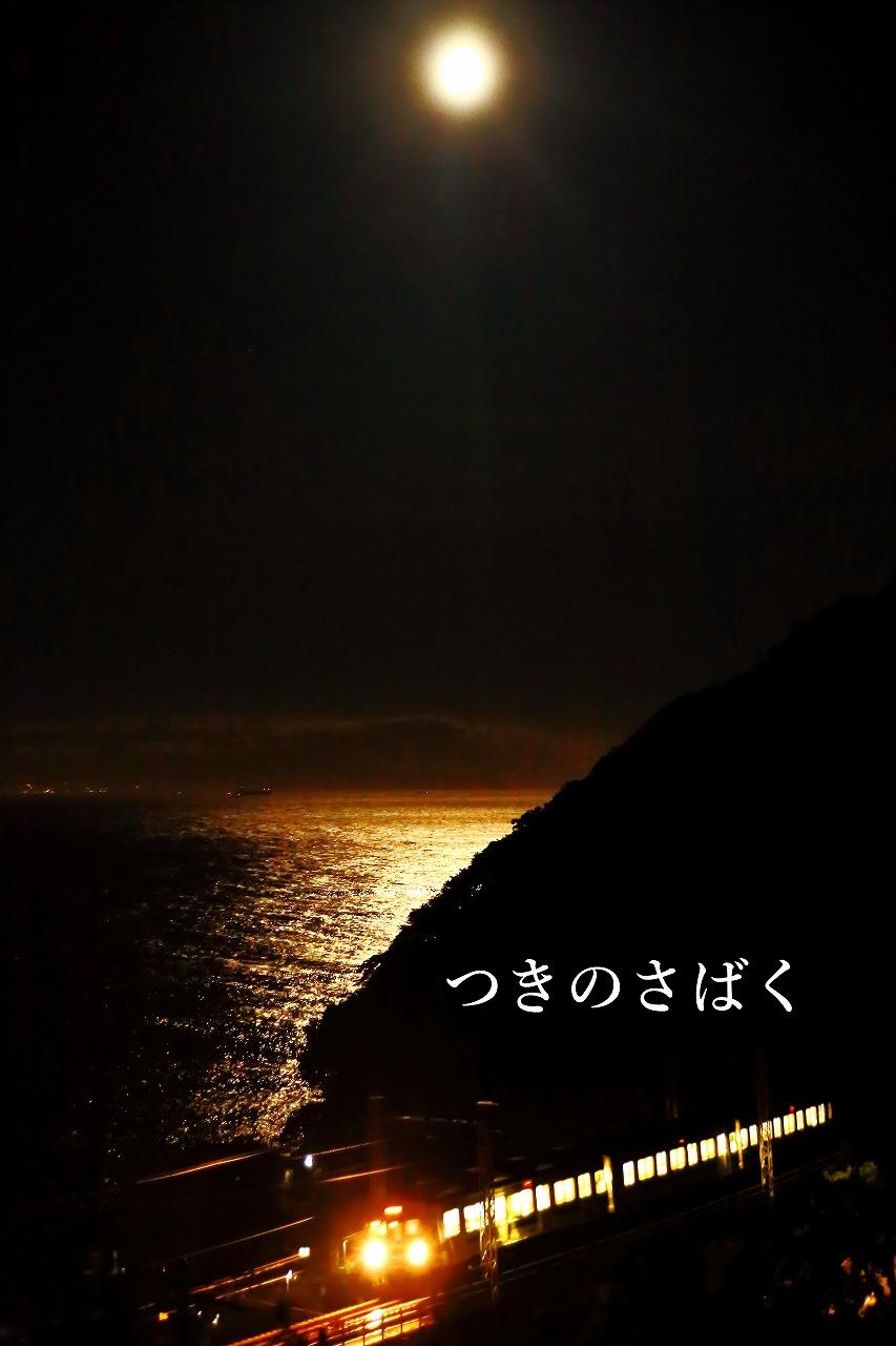 IMG_0931c5700_1.jpg