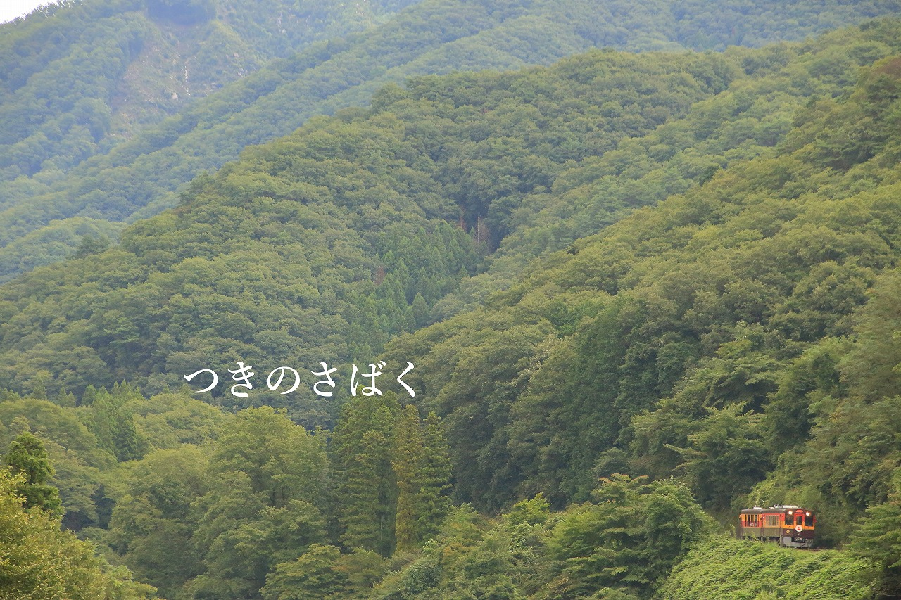 IMG_1492f6700_1.jpg
