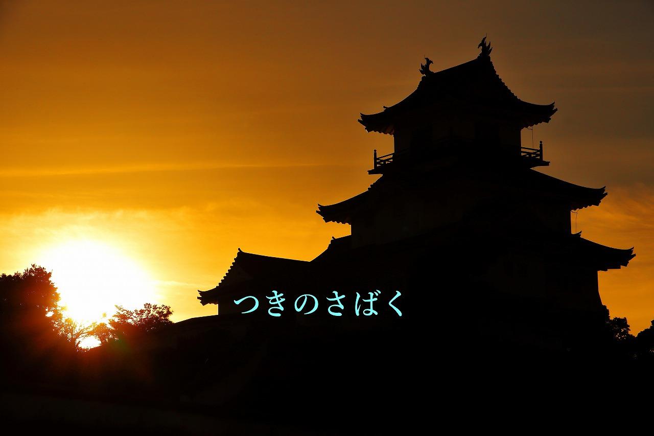 IMG_6018c9600s_1.jpg