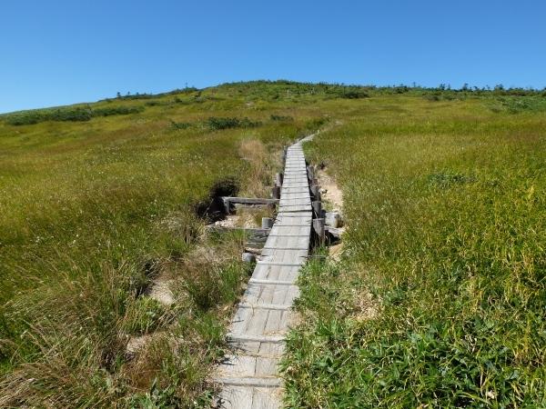 0822平ヶ岳への道2