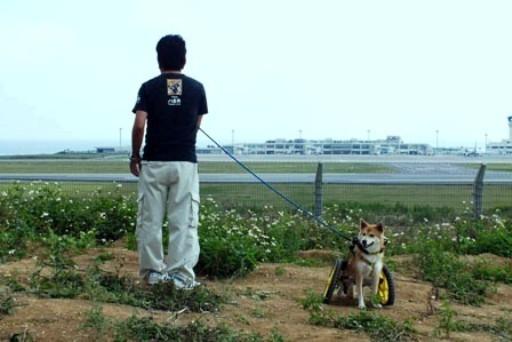 まおちゃん-c 20130401190916c-z