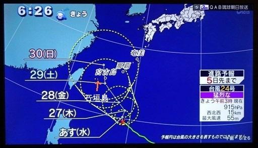 台風バナナ-h DSC03305