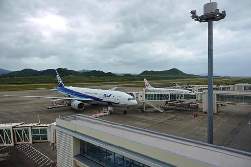 台風翌日-b DSC03021