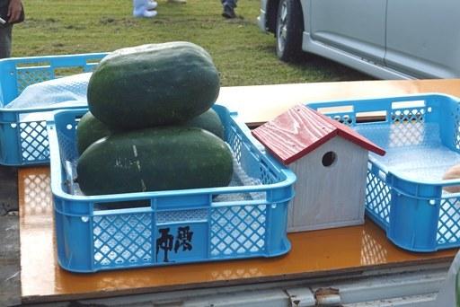 名蔵軽-f DSC03036