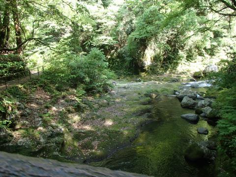 180428天岩戸神社07