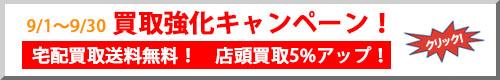 campaign1809.jpg