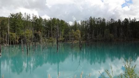 13:31 青い池