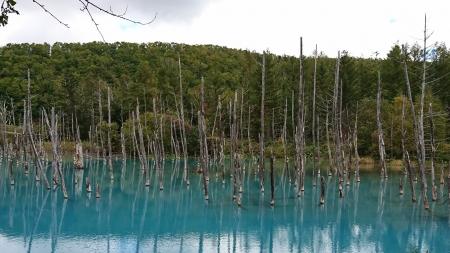 13:26 青い池