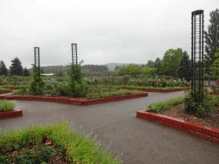 いわみざわ公園 バラ園