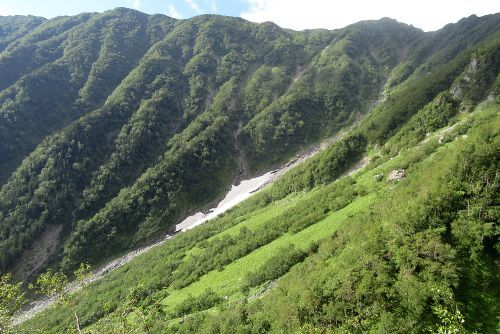 大樺沢の雪渓