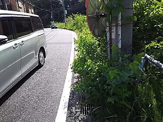 hyaku1240-2.jpg