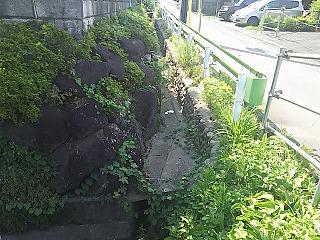 sakahama2760-1-2.jpg