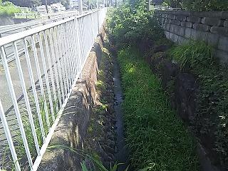 sakahama2760-1-3.jpg