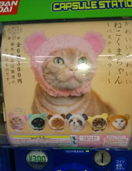 猫がくまになれるかわいいかぶりもの 300円