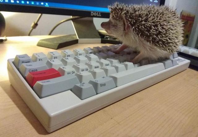 Mechanical_Keyboard127_93.jpg