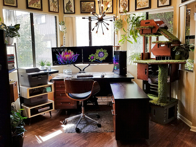 PC_Desk_MultiDisplay124_76.jpg