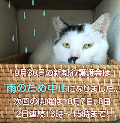 jiiki_2018_9_29.jpg