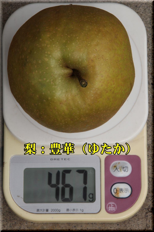 1yutaka180913_016.jpg